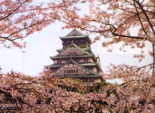 Osaka: Favorite Places, Castles, Places I D, Osaka Japan, Cherries, Cherry Blossoms