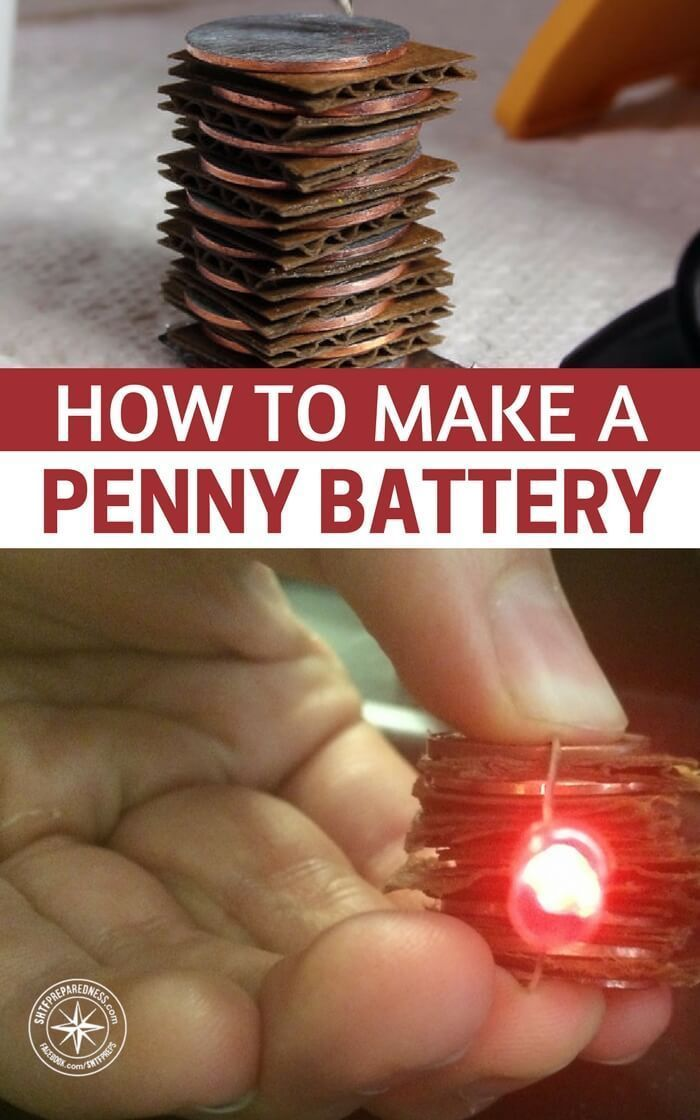 How To Make a Penny Battery — See how to make a penny battery today and always have a quick source of power in an emergency. Perfect for small projects like powering a small clock or LED's light bulbs. #prepping #preparedness #diy