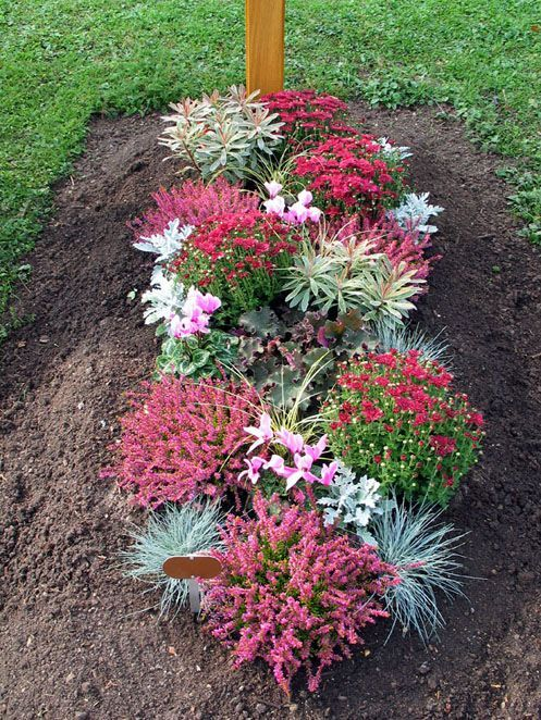 Great Bepflanzung Herbst Mehr