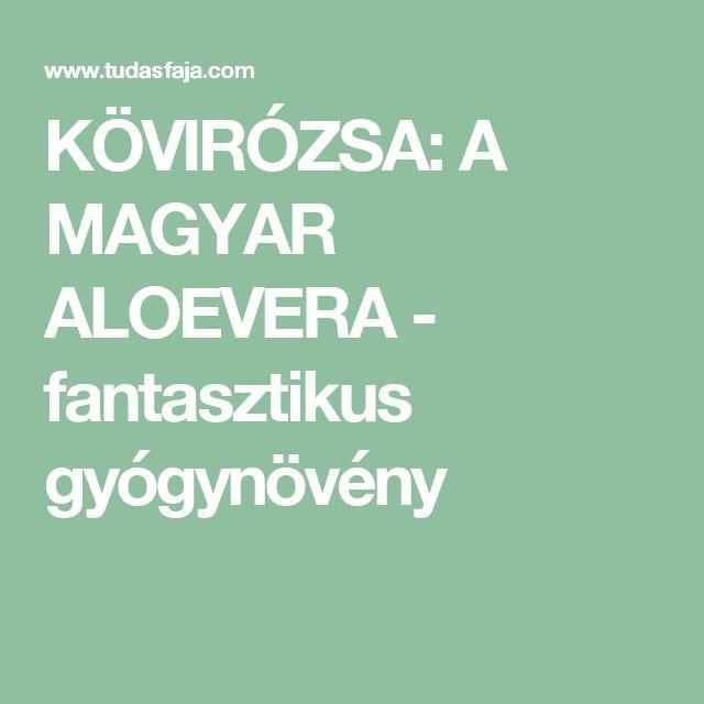 KÖVIRÓZSA: A MAGYAR ALOEVERA - fantasztikus gyógynövény