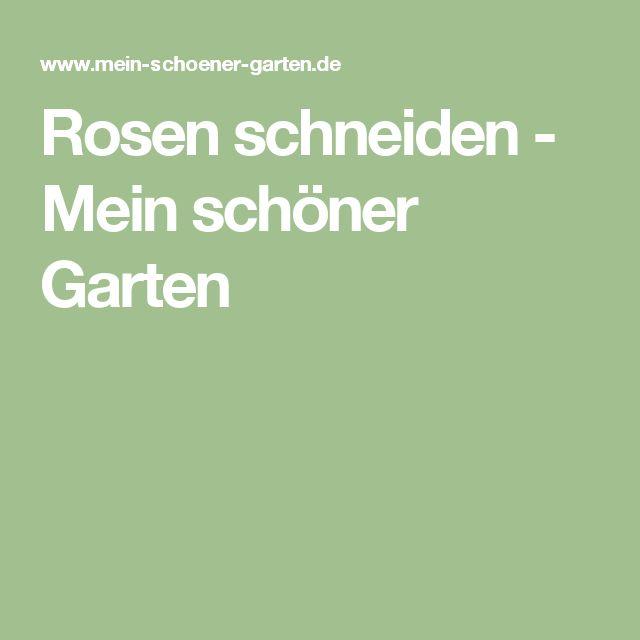 Rosen schneiden - Mein schöner Garten