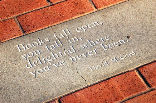 Books fall open, you fall in, delighted where you've never been. ~ David McCord