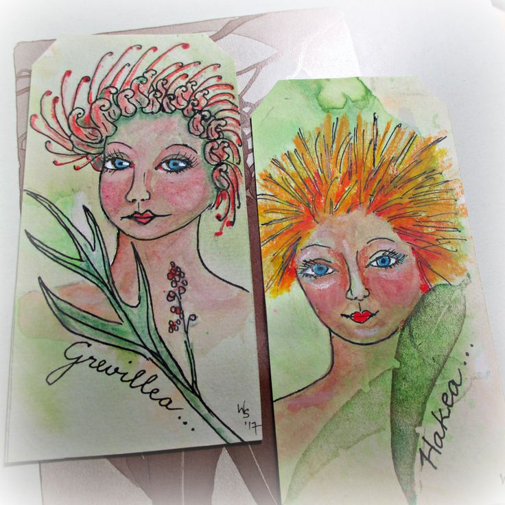 Grevillea & Hakea = Bush Folk drawings - watercolour, pen pencil. A blog about art, stitching, textile art, dolls, mixed media hand made art and inspiring places and people