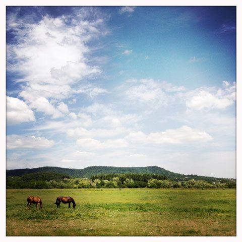 Landscape near Szentbékkálla, Hungary
