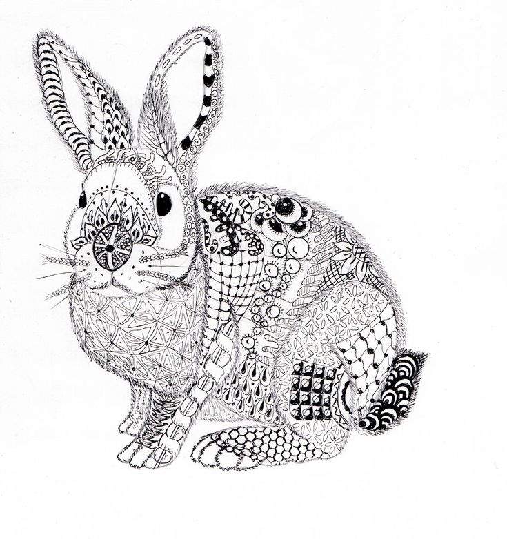 Efie Goes Zentangle Ben Kwok Rabbit Adult ColoringColoring BooksColoring