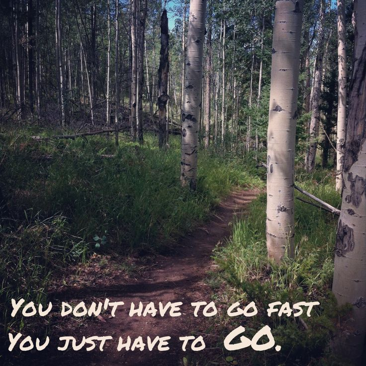 Trail running inspiration!                                                                                                                                                                                 More