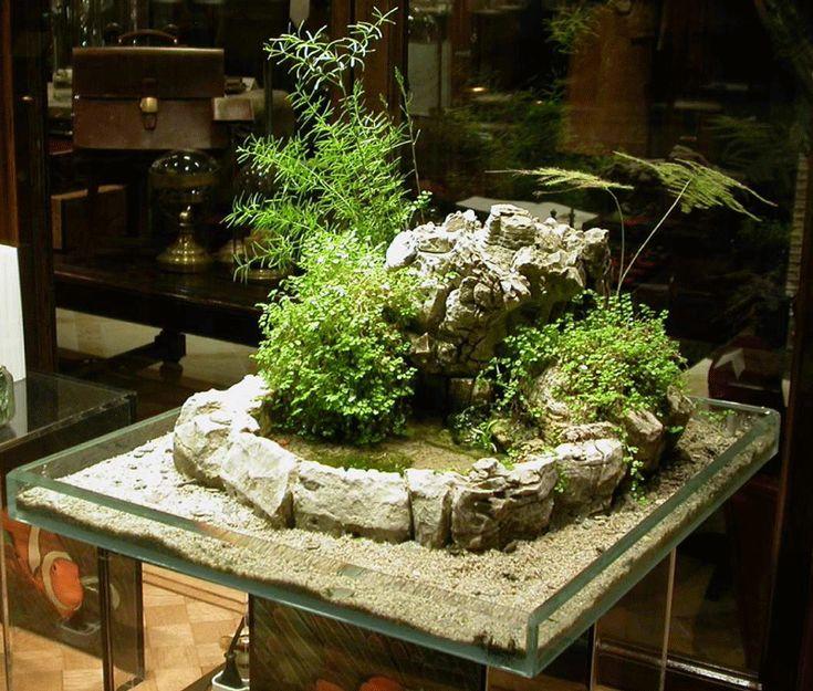 Jardin japonais miniature int rieur o la rigueur l 39 ordre for Interieur japonais