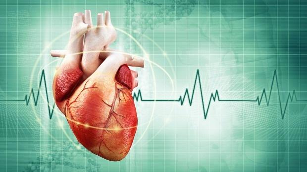 Mutações genéticas não herdadas causam 10% dos casos de cardiopatia congênita.