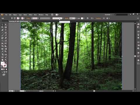 how to crop image in illustrator youtube