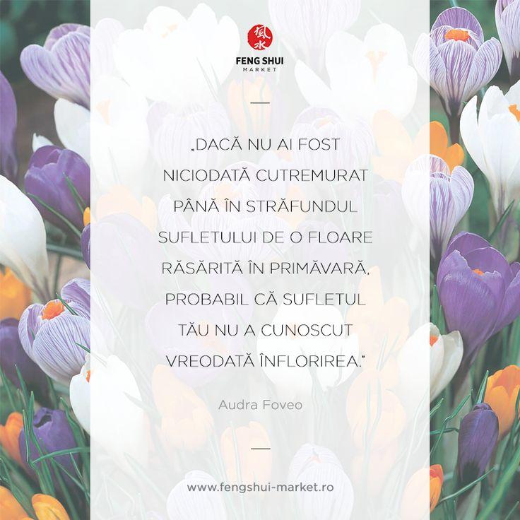 Dragele noastre prietene, vă dorim să aveți o primăvară deosebită, zile senine și numeroase mărțișoare dăruite din suflet.