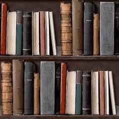 Grandeco Ideco Library Bookcase Wallpaper - POB-33-01-6