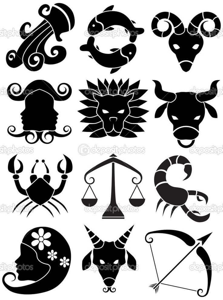 27 best astrology symbolism chinese zodiac symbology