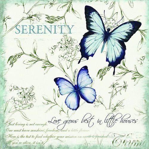 Mariposas azul y verde