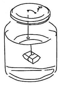 Sciencespace.nl suikerkristal maken