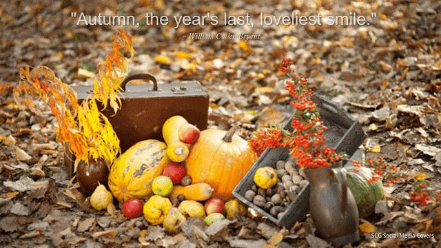 "SCG - Social Media COVERS: GOOGLE+ Covers: AUTUMN-themed - ""Autumn, the year's last loveliest smile."" | SET 1"