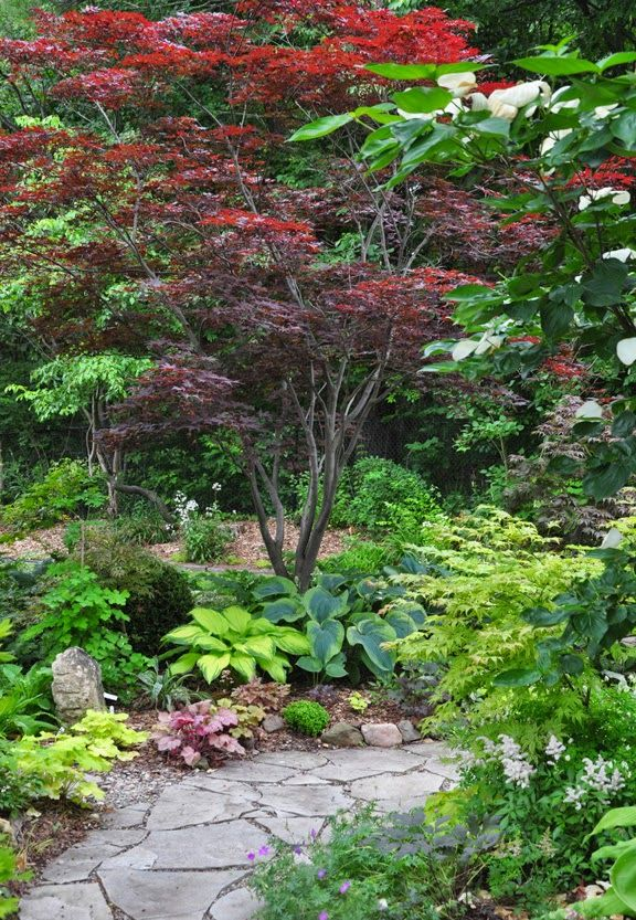 Hardscape: Gray pavers, brown mulch, brown pathway fines