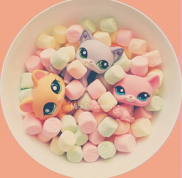 AWW when I saw this I HAD to pin it, its so cute! LPS + Marshmallows? COLORFUL marshmallows? ADORABLE!