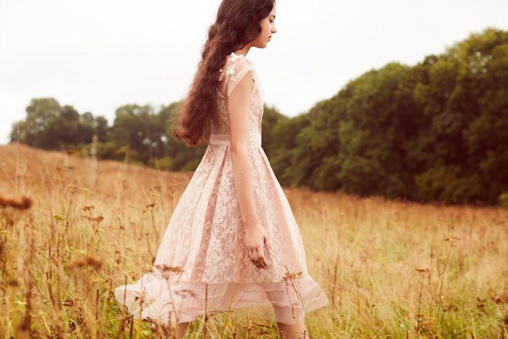 Pale pink lace Monsoon bridesmaid dresses