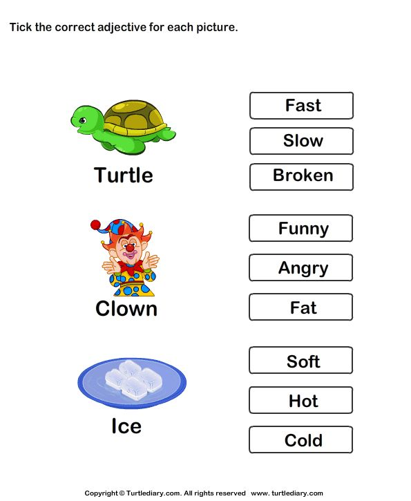 Choose the best adjective - TurtleDiary.com