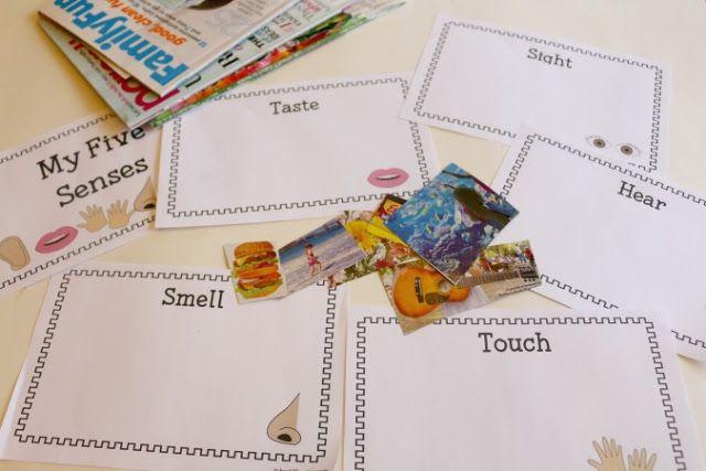 63 best five senses images on pinterest kindergarten
