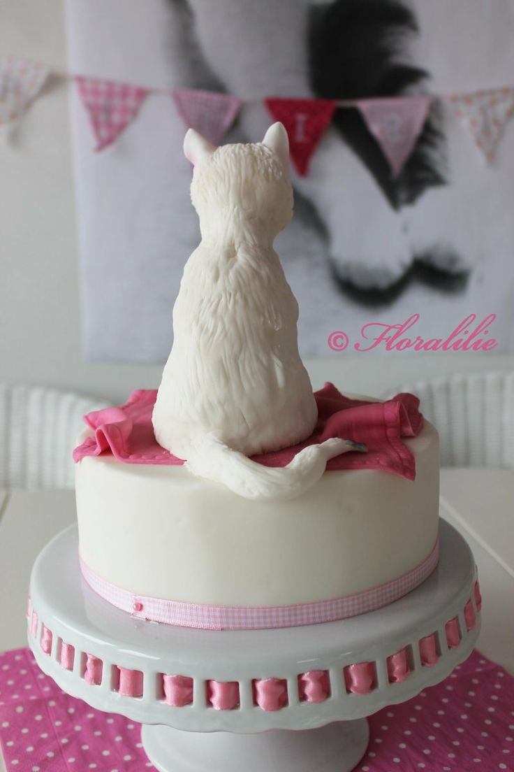 1040 best Cat Cakes images on Pinterest Cat cakes Birthday