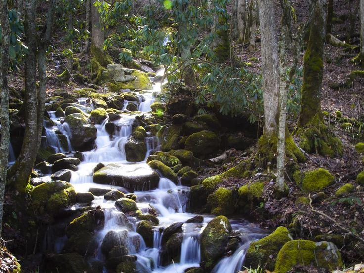 Smokey Mountains North Carolina stream