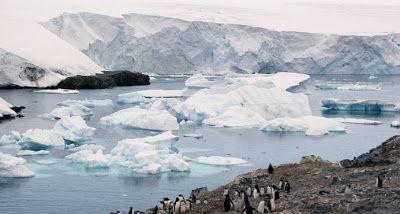 Revisando La Actualidad: Uno de los mayores bloques de hielo, a punto de de...