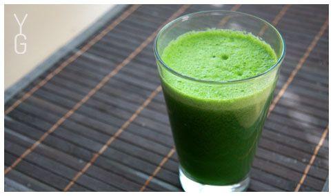YogaGuru.cz / Takhle vypadalo naše první nepovedené zelené odšťavňování: celer, okurky a svazek petrželové natě :)