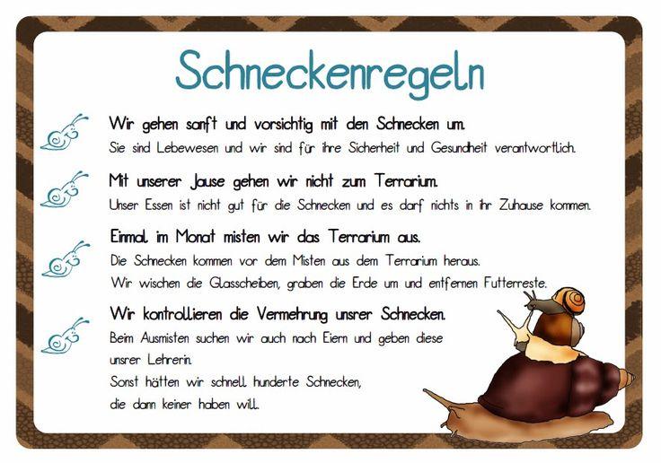 krabbelwiese: Schneckerei in der Schule
