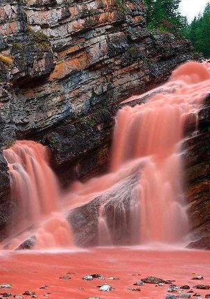 Cameron Falls, Canada | Pink water... result of heavy rains stirring up sediment called argolite.