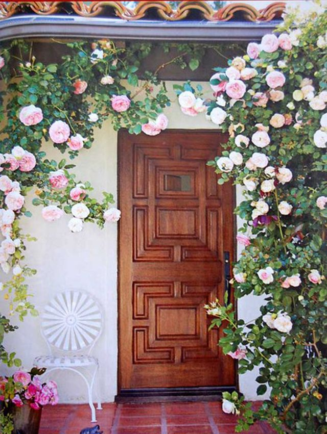 For front door trellis garden pinterest for Beautiful wood front doors