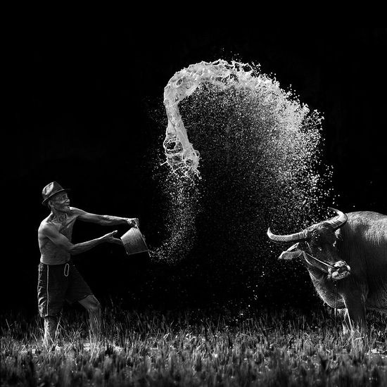 throwing waterPhotographers, Photos, Sports Photography, White Photography, Ario Wibisono, Art, Black Whit, Pictures, Action Photography
