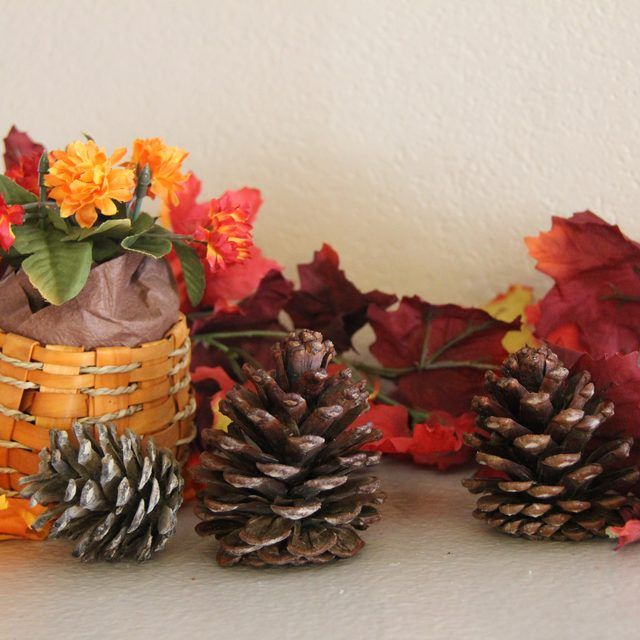 There are several easy methods for creating homemade cinnamon-scented pine cones. Takes 4 to 6 wks