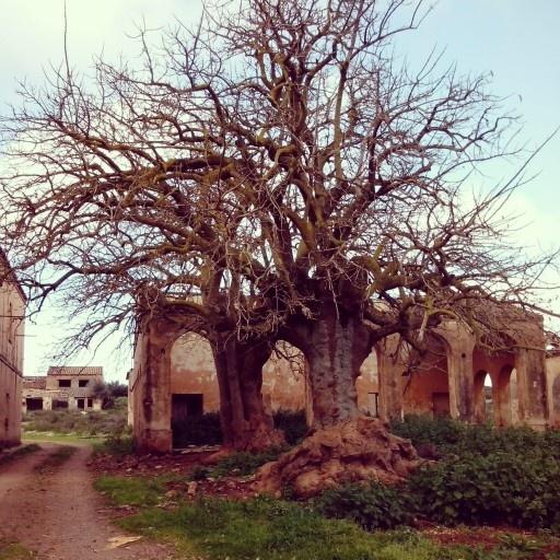 villaggio archeologico