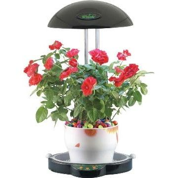 25 best images about growlight on pinterest gardens grow lamps and indoor grow lights - Plant growing lamps ...