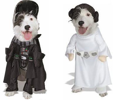 disfraces para perros: Disfraces De, Costumes, Pet, Disfrac Para, Dogs Costumes, Halloween Para, Dog, Disfrac De Halloween, Animal
