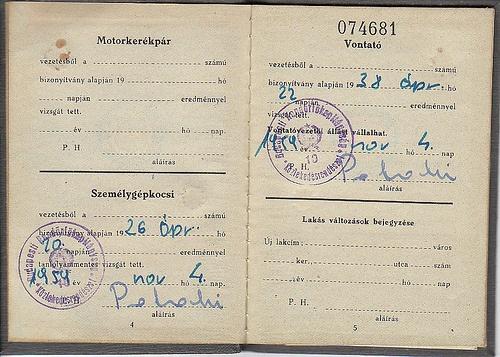 12 best hand bound book images on Pinterest Bound book, Passport - lost passport form