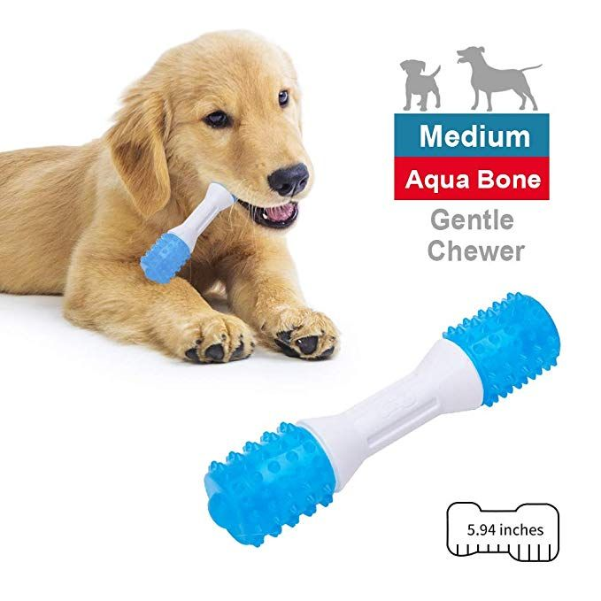 Eetoys Puppy Teething Toys Mint Flavored Dog Chew Toys For Gentle Chewers Promotes Dental Health Reduces Teething Discomfort Boredom Freshen Breath Dog Toy Made Puppy Toys Teething Dog Chew Toys Puppy