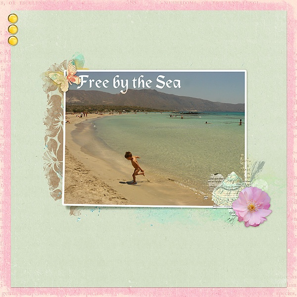 Free by the sea by Nessita