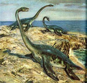 Упражнение «Изучаем динозавров» для 7 лет