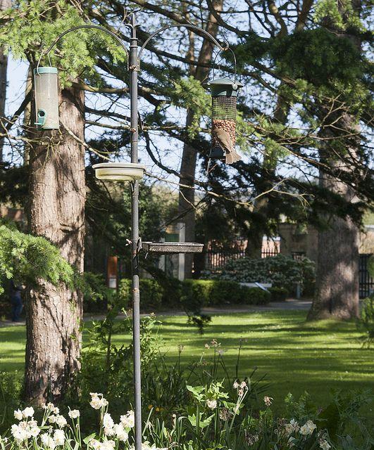 Jardín Botánico Gijón, Asturias