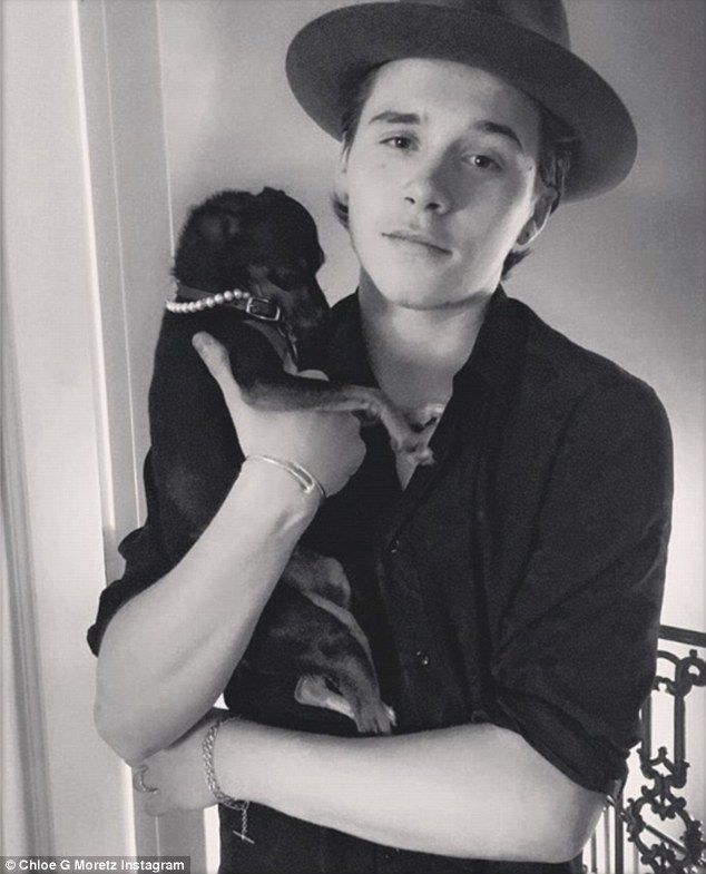 Puppy love! Chloe Grace Moretz proved on Sunday that absence makes the heart grow stronger as she shared a black-and-white image of her Brooklyn Beckham holding her tiny dog with the caption, 'These two'
