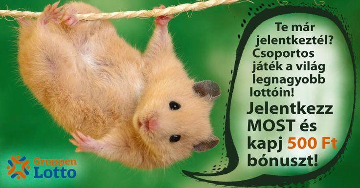 Előregisztráció a csoportos lottó oldalra - GruppenLotto