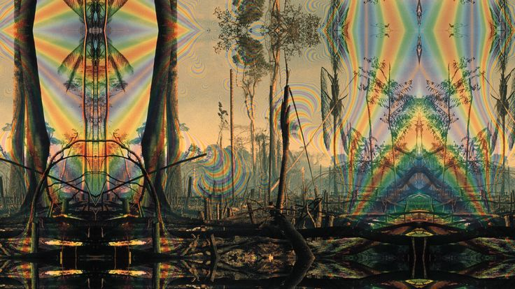 psychedelic trees