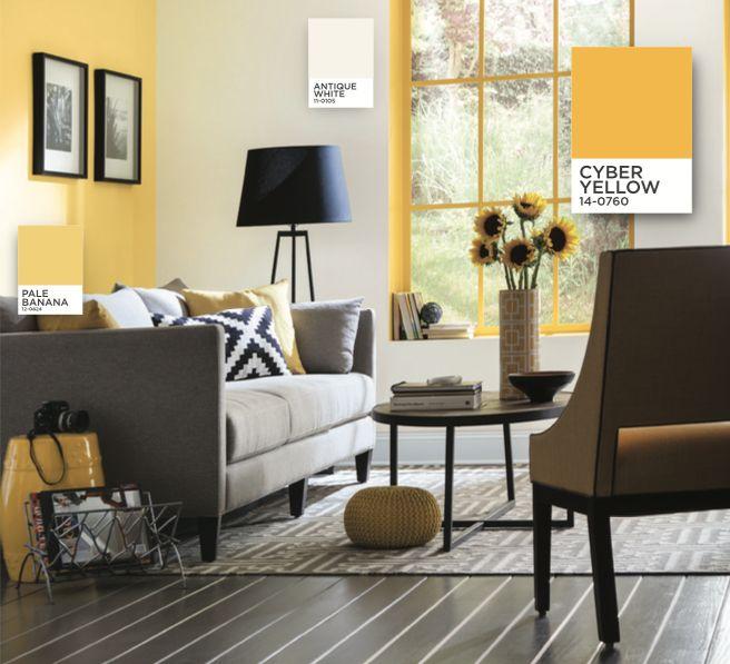 Paint Ideas For Living Room Ireland: 29 Best Ideas About Pantone Paint On Pinterest