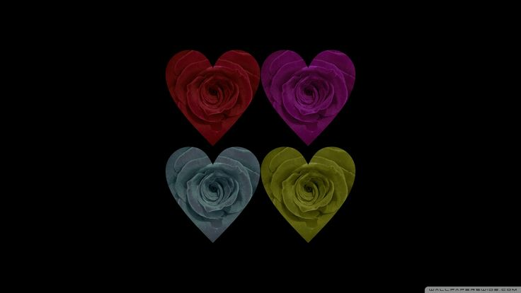 Flowers Roses Power Rose Flower Heart Images Hd Desktop for HD
