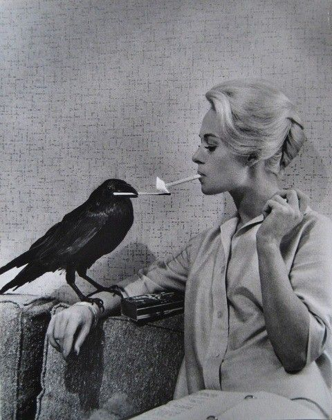 1962.  Actress Tippi Hedren. Mother of Melanie Griffith and Grandmother of Dakota Johnson. Photo by Philippe Halsman (B1906-D1799)
