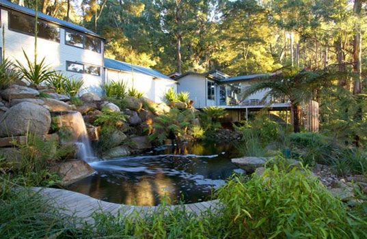 natural swimming pools....no chlorine all filtered by the plants and aerated water!