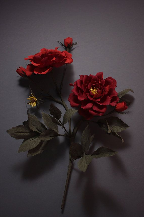 Gallica crepe paper roses, wall hanging by Papetal on Etsy
