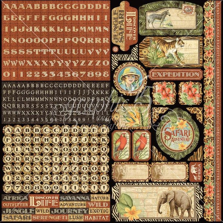 Graphic 45 Safari Adventure Cardstock Stickers – 7 Kids Your Crafting Supply Store